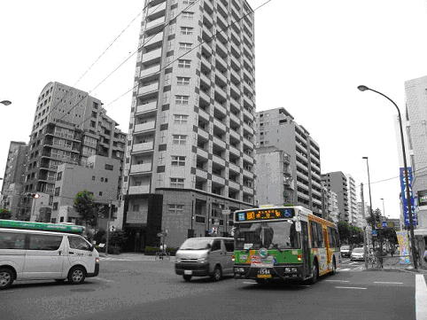 第5回 バス娘が旅する東京